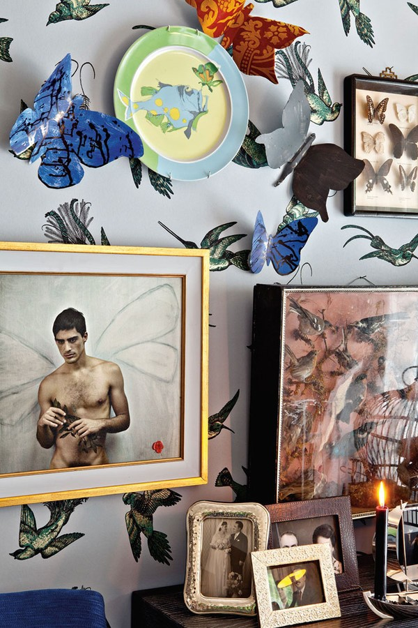 蝴蝶照片装饰画