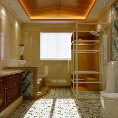 别墅卫生间混搭实景图