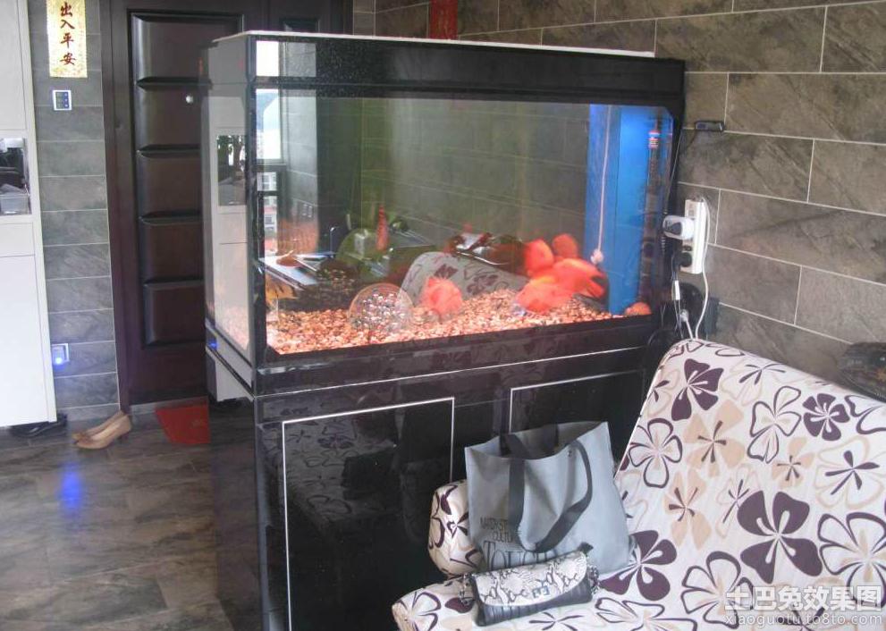 玄关客厅鱼缸隔断图片