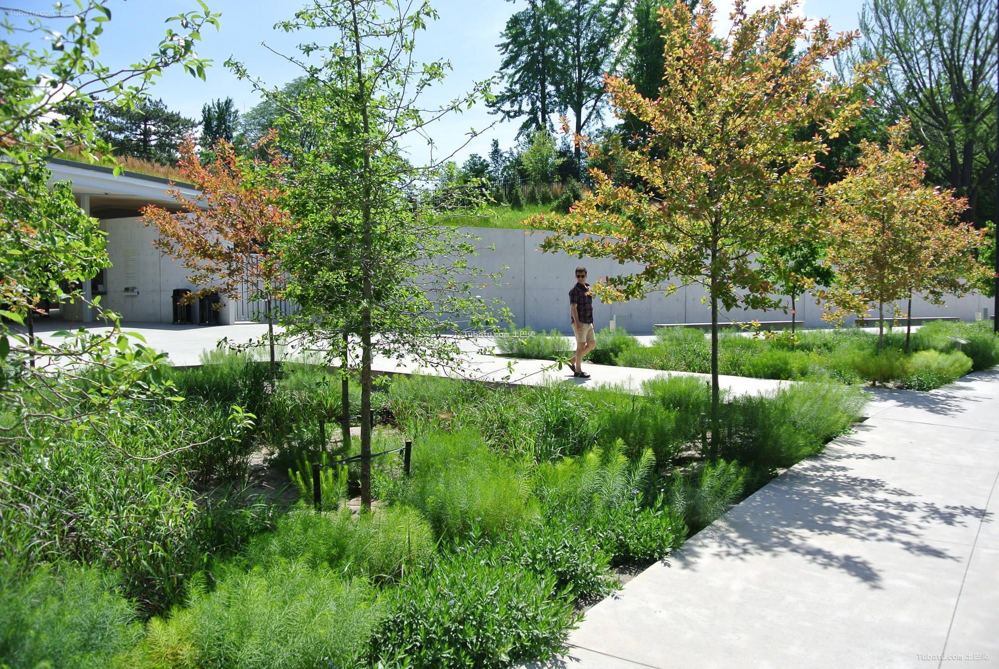 现代公园绿化设计图片