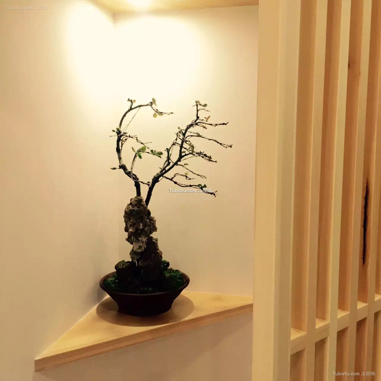 原木日式风格家装玄关设计效果图