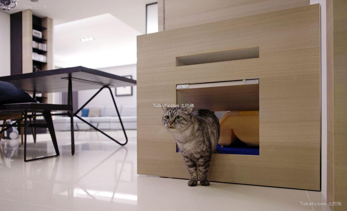 现代宠物房