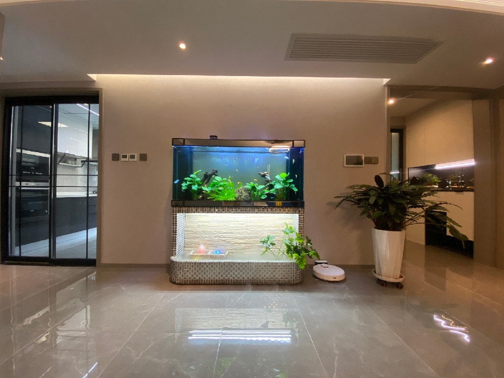 天山熙湖装修实景,超大客厅+隐形门16883778