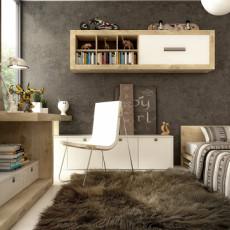 家装书房靠墙书柜设计图