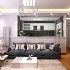 现代风格吊灯一室两厅效果图