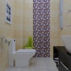 欧式卫生间淋浴房效果图